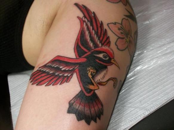 derrick bird 2